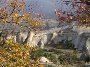 Autumn leaves of Cappadocia