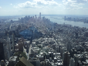 View from 102nd floor