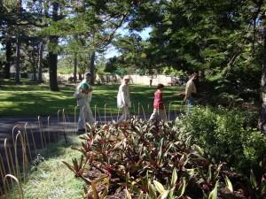 Short walk in the garden