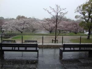 Osaka-jo Park
