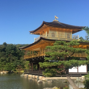 The Golden Pavilion in Autumn